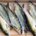 Public Health investigates rare bacterial infection associated with raw seafood