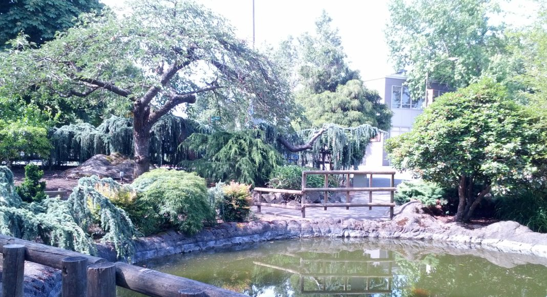 Things To See in Kent: Kaibara Park, Downtown Kent