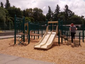 Things To Do in Kent: Climb, Slide and more at Garrison Creek Park