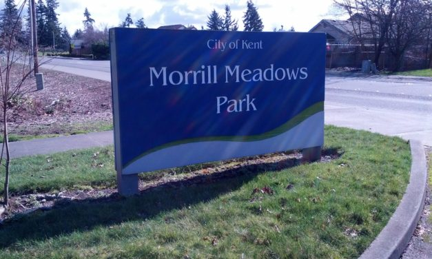 City Wants Input on Plans for Morrill Meadows & East Hill Park Consolidation