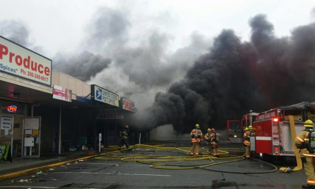 Three-Alarm Fire on Pacific Highway Damages 6 Businesses