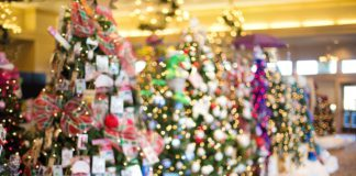 Kent Events: December Happenings in and around Kent, Washington