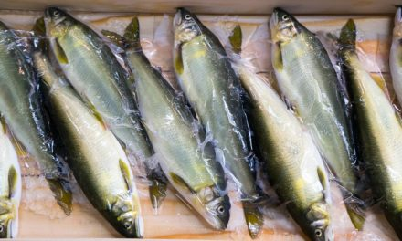 Public Health Investigates Rare Bacterial Infection from Raw Seafood