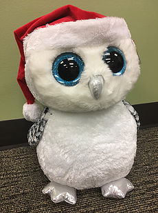 Kent Station is hosting a Hooliday Owl contest!