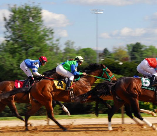 Things To Do in Kent: Indian Relay Racing at Emerald Downs