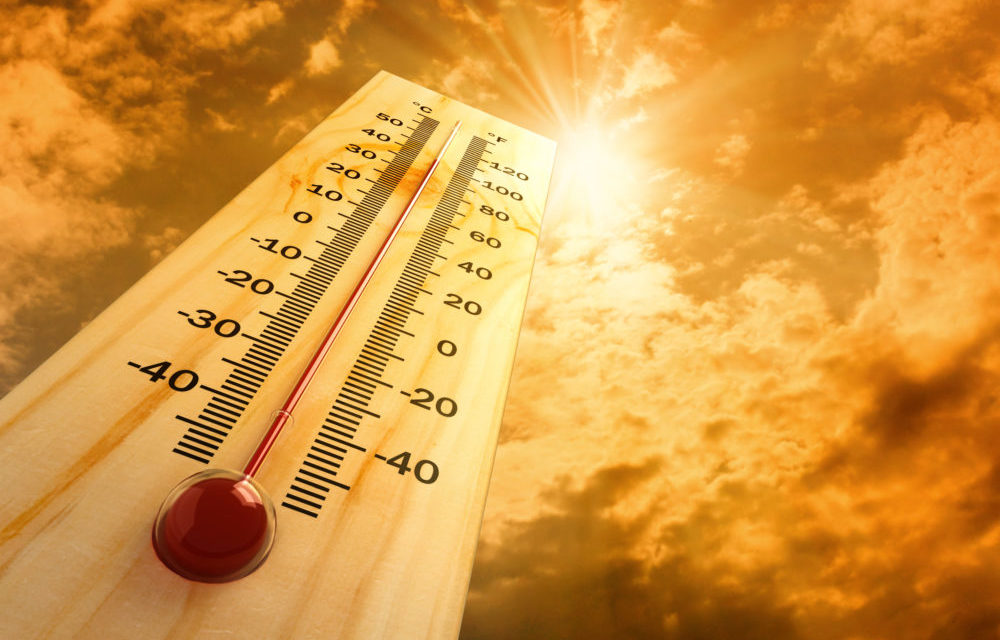 NWS Issues Excessive Heat Warning for Western Washington, Aug. 1-4