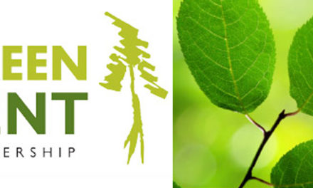 Volunteers needed for Green Kent Event at Park Orchard Park Saturday