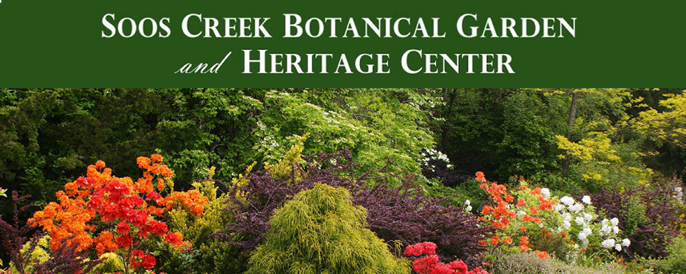Memorial Day Plant Sale at Soos Creek Botanical Gardens May 25-28