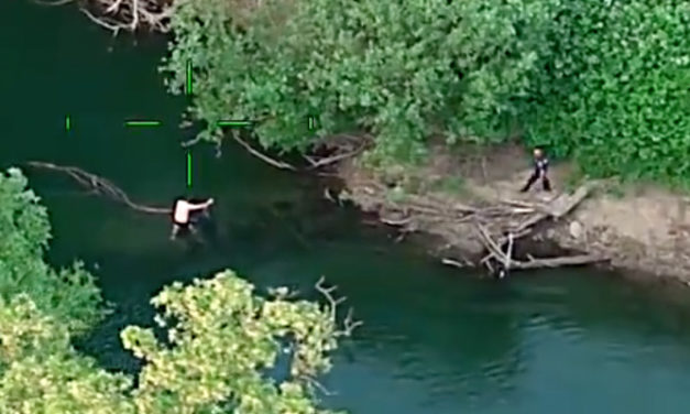 VIDEO: Hit & run suspect who pulled gun tries to swim away from police