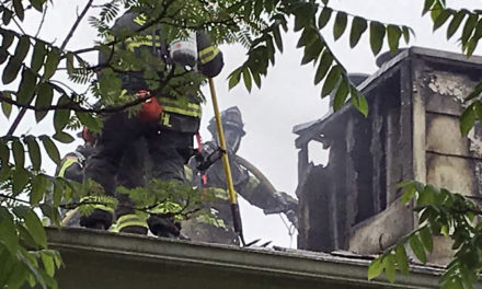 Chimney fire hits house in Covington Sunday