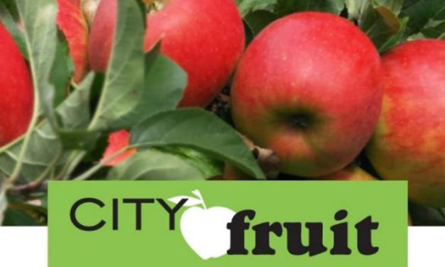 Tree owners invited to share fruit for 'Harvest for All'