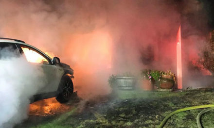 Four residents escape house fire, but dog is killed