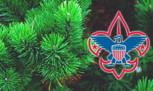Local Boy Scouts will help you 'Treecycle' this Saturday