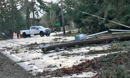 Huge windstorm knocks out power to thousands early Sunday