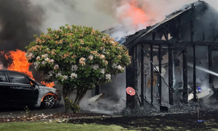 Smoke alarm alerts Kent residents to escape house fire; cat rescued