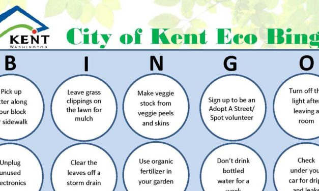 Are you getting 'borentined'? Play 'Kent Eco Bingo' to celebrate Earth Month