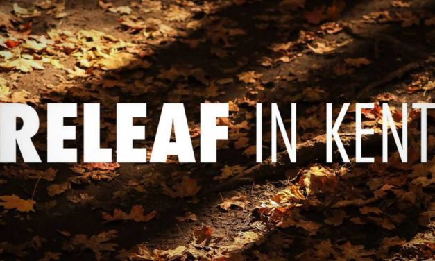 Kent Parks Conservation's annual ReLEAF Event is this Saturday, Oct. 24