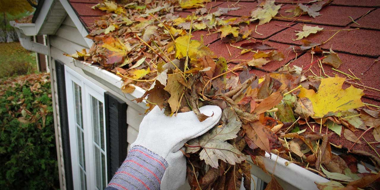 SPONSORED: Team Marti offers Fall Tune-Up Tips for your Home