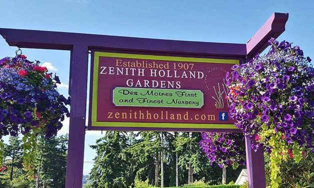 Save 25% on Garden Pots, NOW at Zenith Holland Nursery in Des Moines