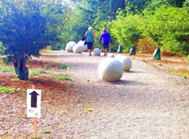 Walking between the globes on the Morrill Meadows Trails