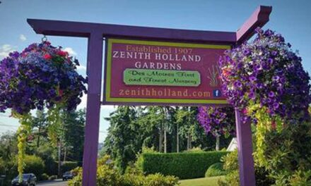 30% savings on Trees and Shrubs through Oct. 31; PLUS so much to discover at Zenith Holland Nursery